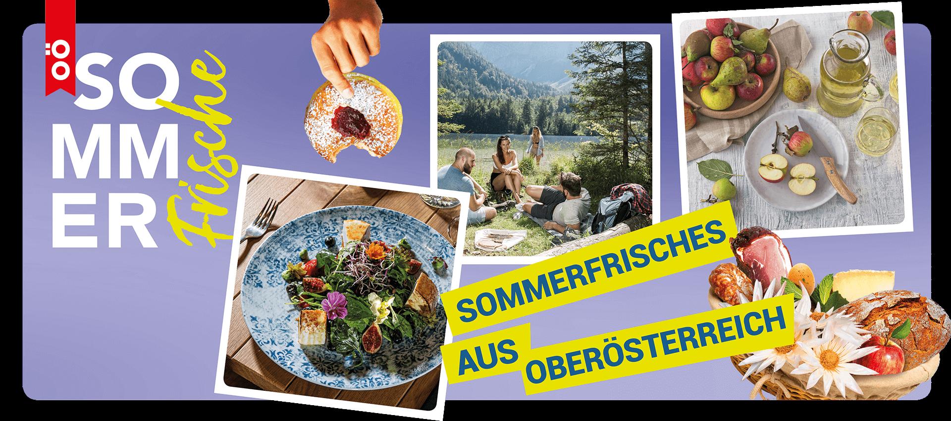 Auf lila Hintergrund sind verschiedene Bilder zu sehen, die mit der Sommerfrische in Verbindung stehen: köstlich aussehende Speisen und Menschen an einem See.